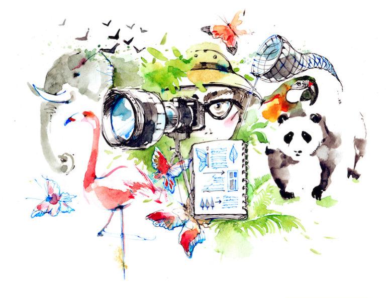 カメラ アウトドア 最適化 リデザイン